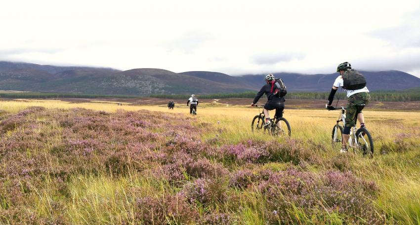 coast to coast biking route scotland